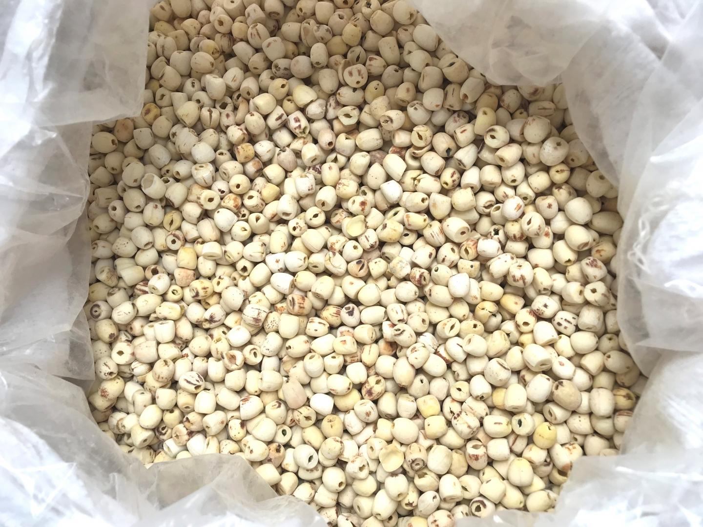 Hạt sen tươi và khô chất lượng cao