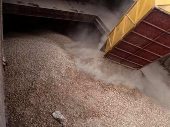 Khoai mì lát xuất khẩu