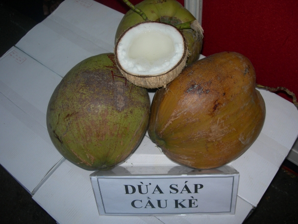 dừa xáp cầu kè