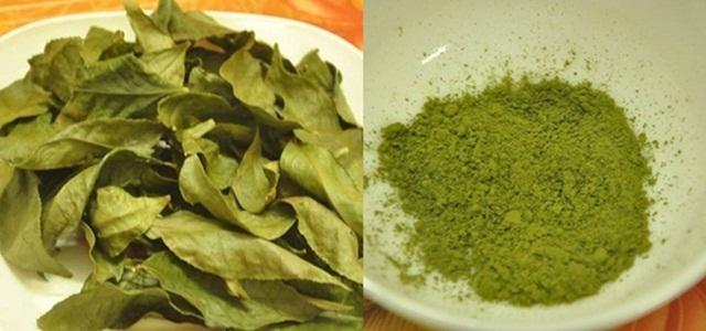 bột trà xanh