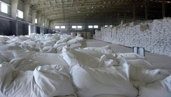 tinh bột mì dạng hạt
