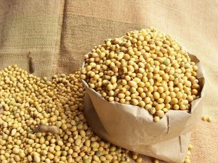 bột đậu nành sấy chín