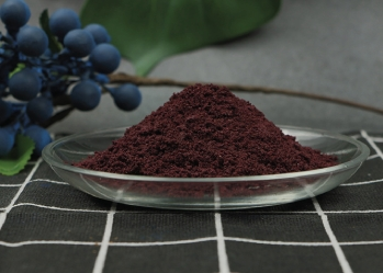 Pure blueberry powder - High quality food powder