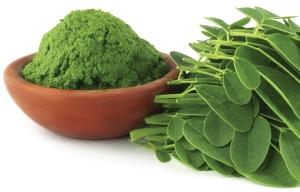 Dinh dưỡng bột chùm ngây nguyên chất | Goodprice Việt Nam