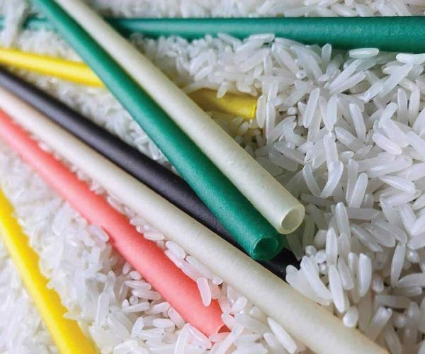 Quy trình sản xuất ống hút gạo bảo vệ môi trường