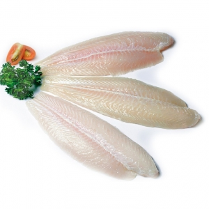 Frozen basa fish fillet from vietnam