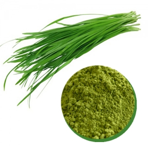 Chives powder