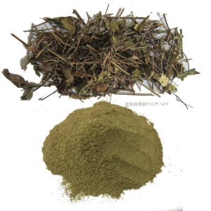 Jasminum subtriplinerve powder high quality