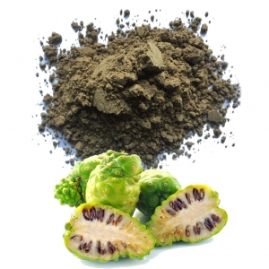 Noni powder high quality from Vietnam