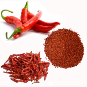 Red chilli pepper powder vietnam