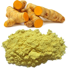 High quality turmeric starch from Vietnam