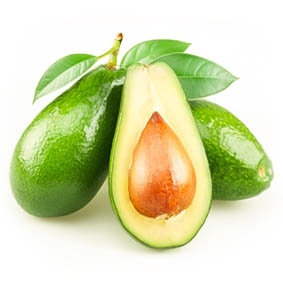 Fresh Avocado fruit from Vietnam
