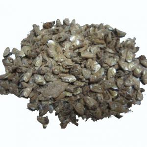 Đầu cá khô xuất khẩu