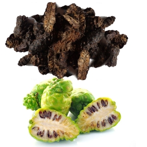 Dried Noni high quality from Vietnam