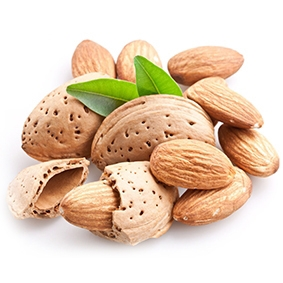 Dried almond from america