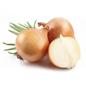 Onion from viet nam with best price and high quality