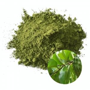 Soursop powder from vietnam