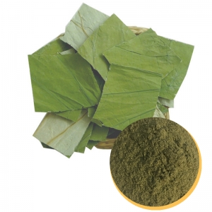 LOTUS LEAF POWDER FROM VIETNAM