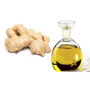 Ginger essential oil with best price and quality from vietnam, india