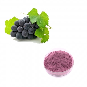 Grape flavor powder for food high quality