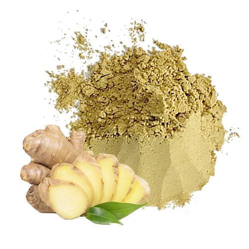 Ginger powder for food