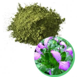 Magen leaf powder from Vietnam