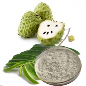 SOURSOP POWDER HIGH QUALITY FROM VIETNAM