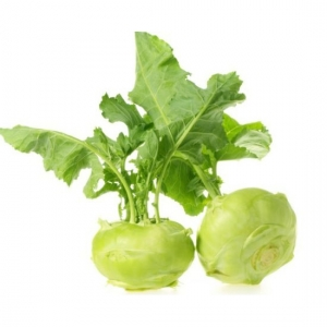 Kohlrabi From  Viet Nam with best price and high quality