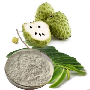 Natural Soursop Flavor Powder, Soursop Flavor Powder High Quality, Soursop flavor powder for drinks