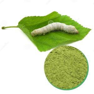 Vietnam Mulberry Leaf Powder
