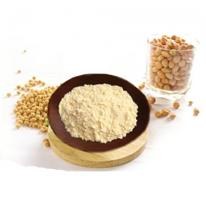 Roasted soybean powder high quality from vietnam