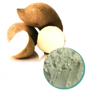 White sweet potato powder from Vietnam