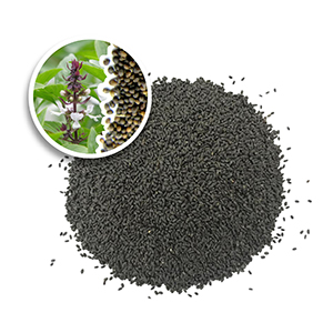 Dried basil seed